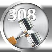 Dien Chan tool nº308